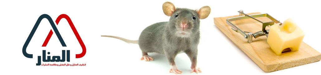 شركة مكافحة الفئران بالمذنب وبالغاط