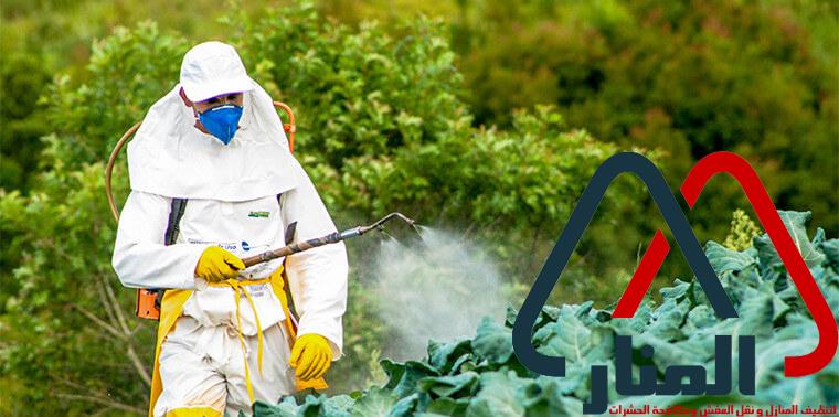 شركة رش مبيدات بالمجمعه