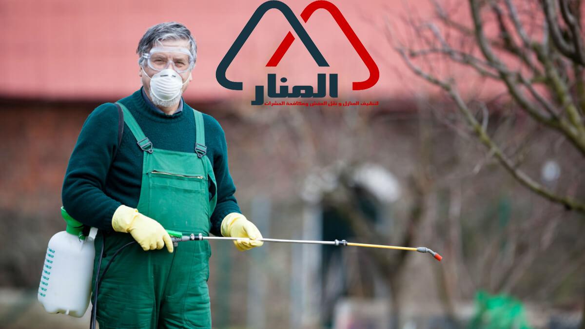 شركة رش مبيدات بالرس وبعنيزه