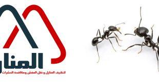 شركة مكافحة النمل الاسود بالرس وبعنيزه